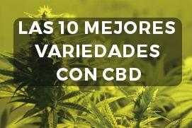 10 variedades CBD