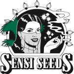 Sensi seeds semillas marihuana