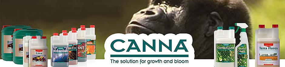Banner Canna