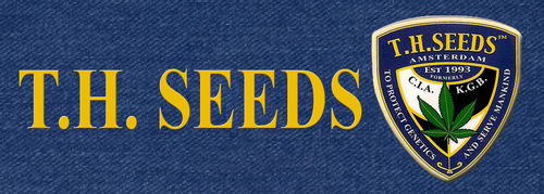 TH Seeds Banner