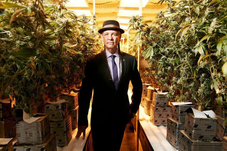 Steve DeAngelo marihuana
