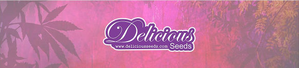 Delicious Seeds Banner