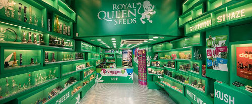 Royal Queen Seeds Banner2