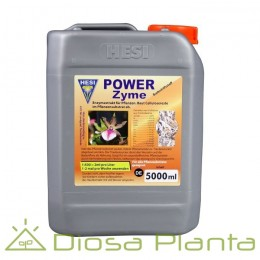 Hesi Power Zyme (5 y 10 litros)