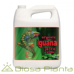 Organic Iguana Juice Bloom 5 litros
