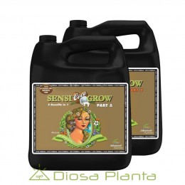 Sensi Grow A+B - (PH P.) Coco 5 litros