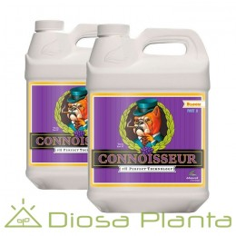 Connoisseur Bloom A+B - PH Perfect 5 y 10 litros