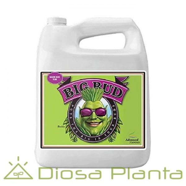 Big Bud (líquido) 5 y 10 litros
