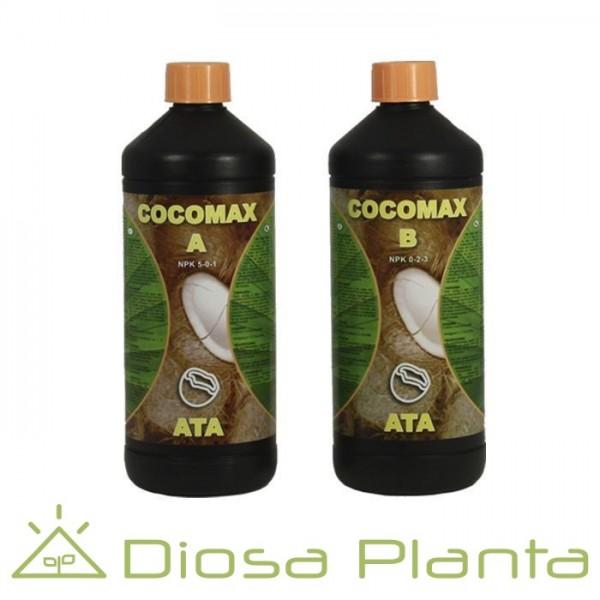 ATA Coco Max A+B (Atami)