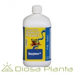 Enzymes+ Advanced Hydroponics
