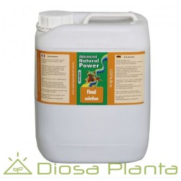 Final Solution Advanced Hydroponics 5 litros