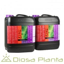 Coco A+B B´Cuzz de 5 y 10 litros