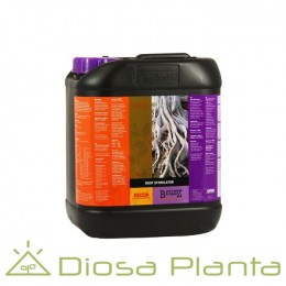 Root Stimulator B´Cuzz de 5 litros