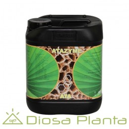 Atazyme (Atami) 5 y 10 litros