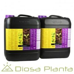 Soil A+B de B´cuzz de 5 y 10 litros