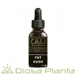 TNT Kush - Cali Terpenes 1ml