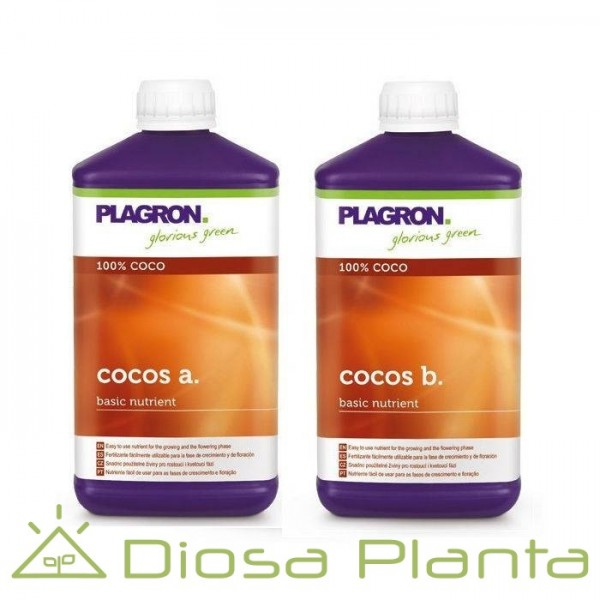 Cocos A+B