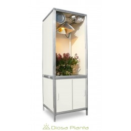 Bonanza Mini Growbox 250