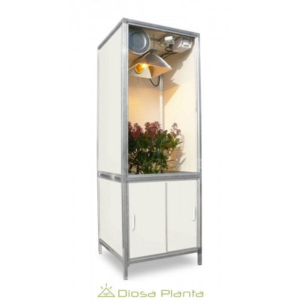 Bonanza mini Grow box 250
