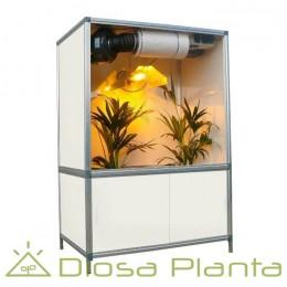 Bonanza Growbox 600