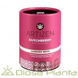 Dutchberry (Artizen)