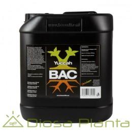 Yuccah BAC 5 litros