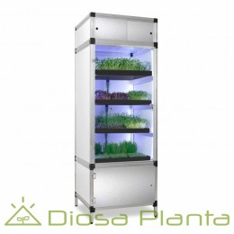 Sprouter grow box for sprouts and microgreans