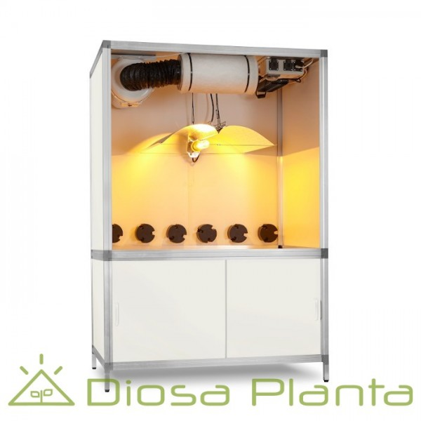 Bonanza 600 dimmable (1m2)