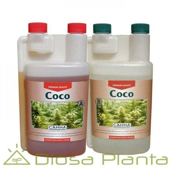 Coco A y B (Canna)