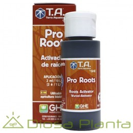 Pro Roots (GHE)