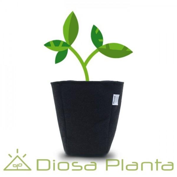 macetas de tela feltpot (varios tamaños) - diosaplanta