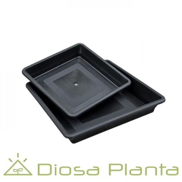Platos para macetas (varios tamaños)