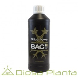 Silica Power (BAC)