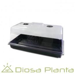 Propagador 55x29x30 cm (Pure Factory)