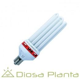 Fluorescente compacto floración 125W