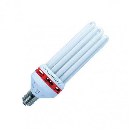 Fluorescente compacto 125W (floración)