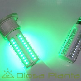 Bombilla LED Verde 3,5W (Luz nocturna)