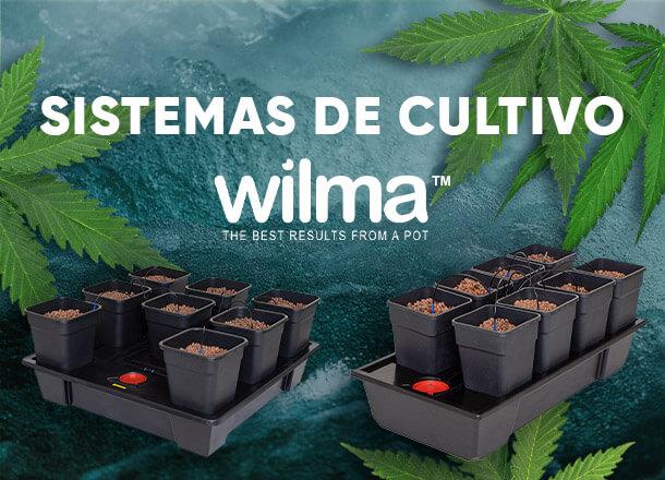 SISTEMAS DE CULTIVO WILMA DE ATAMI